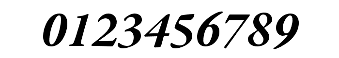 Garamond Premier Pro Bold Italic Display Font OTHER CHARS