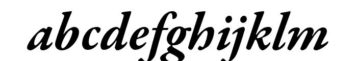 Garamond Premier Pro Bold Italic Display Font LOWERCASE