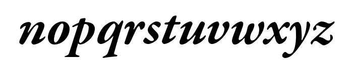 Garamond Premier Pro Bold Italic Font LOWERCASE