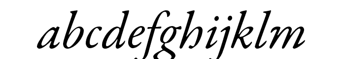 Garamond Premier Pro Italic Subhead Font LOWERCASE