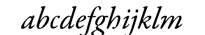 Garamond Premier Pro Medium Italic Display Font LOWERCASE