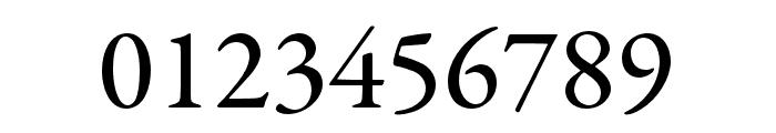 Garamond Premier Pro Medium Subhead Font OTHER CHARS