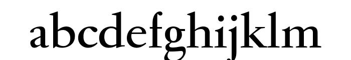 GaramondFBDisplay Bold Font LOWERCASE