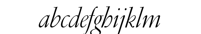 GaramondFBDisplay LightItal Font LOWERCASE