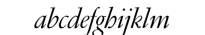 GaramondFBDisplay RegularItal Font LOWERCASE
