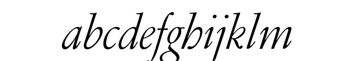 GaramondFBText LightItal Font LOWERCASE
