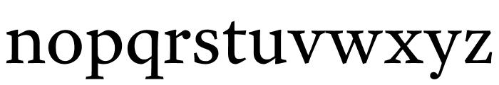 Garvis Pro Regular Font LOWERCASE