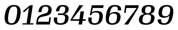 Gimlet Text Medium Italic Font OTHER CHARS
