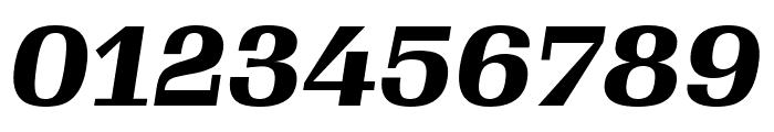 Gimlet Text Narrow Black Italic Font OTHER CHARS