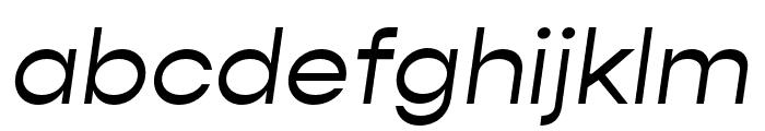 Gopher Italic Font LOWERCASE