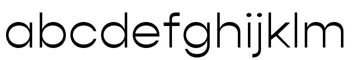 Gopher Light Font LOWERCASE