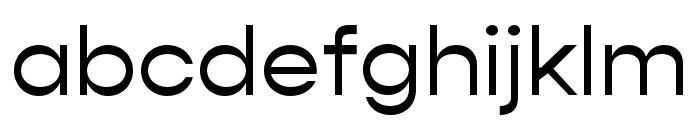 Gopher Regular Font LOWERCASE