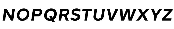 Halcom Bold Italic Font UPPERCASE