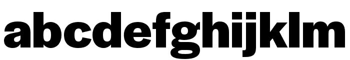 Halyard Display Bold Font LOWERCASE