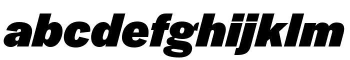 Halyard Micro Black Italic Font LOWERCASE
