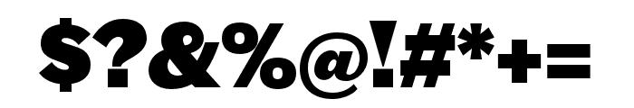 Halyard Micro Black Regular Font OTHER CHARS