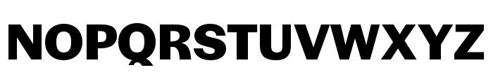 Halyard Micro Bold Font UPPERCASE