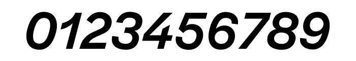 Halyard Micro Medium Italic Font OTHER CHARS