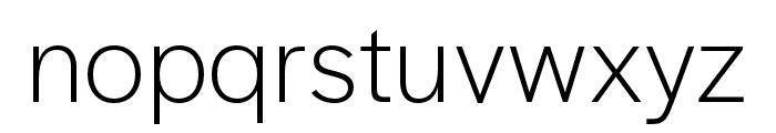 Halyard Text Light Font LOWERCASE