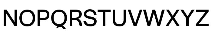 Halyard Text Regular Font UPPERCASE