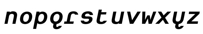 Heimat Mono Bold Italic Font LOWERCASE