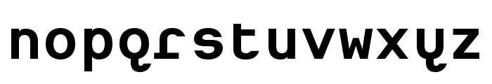 Heimat Mono Bold Font LOWERCASE