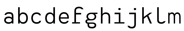 Heimat Mono Regular Font LOWERCASE
