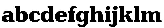 Henriette Condensed Heavy Font LOWERCASE