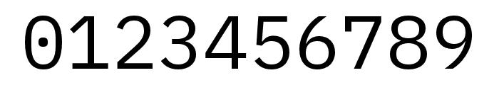 IBM Plex Mono Regular Font OTHER CHARS