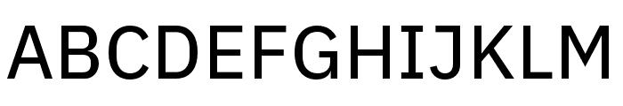 IBM Plex Sans Hebrew Text Font UPPERCASE