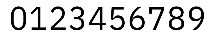IBM Plex Sans Regular Font OTHER CHARS