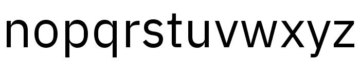 IBM Plex Sans Regular Font LOWERCASE