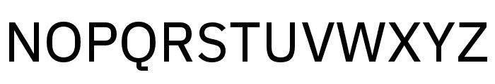 IBM Plex Sans Text Font UPPERCASE
