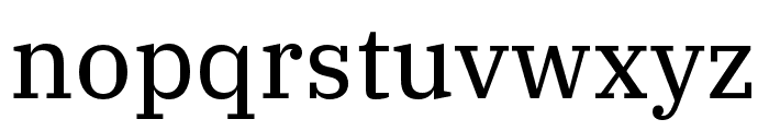 IBM Plex Serif Text Font LOWERCASE