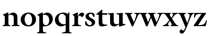 ITC Galliard Pro Black Italic Font LOWERCASE