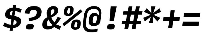 Input Mono Bold Italic Font OTHER CHARS