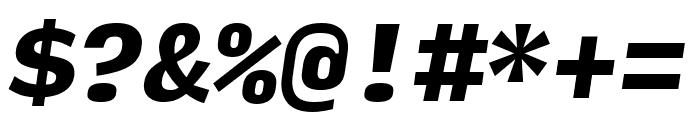 Input Mono Narrow Black Italic Font OTHER CHARS