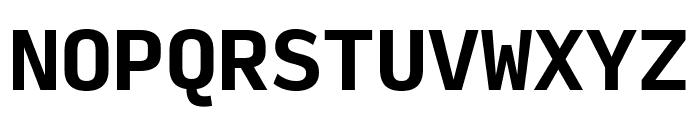 Input Mono Narrow Bold Font UPPERCASE