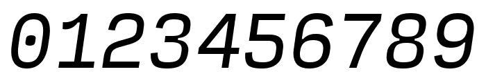 Input Mono Narrow Italic Font OTHER CHARS