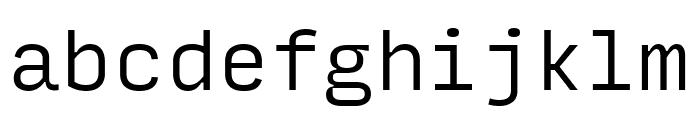 Input Mono Narrow Light Font LOWERCASE