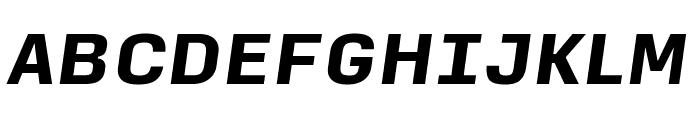 Input Sans Black Italic Font UPPERCASE