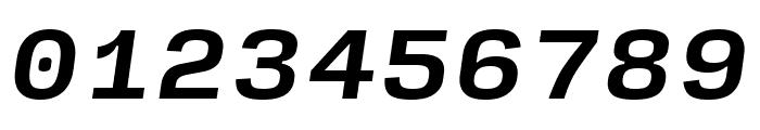 Input Sans Bold Italic Font OTHER CHARS