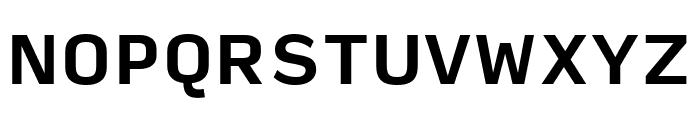 Input Sans Narrow Bold Font UPPERCASE