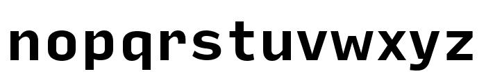 Input Sans Narrow Bold Font LOWERCASE
