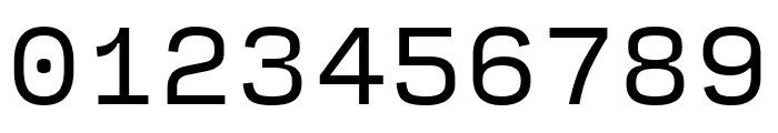 Input Sans Regular Font OTHER CHARS