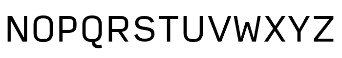 Input Sans Regular Font UPPERCASE