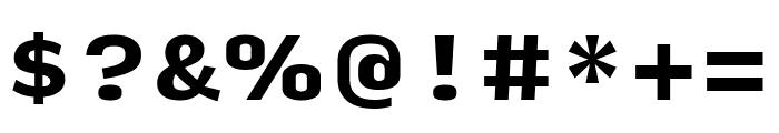 Input Serif Black Font OTHER CHARS