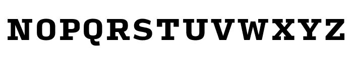 Input Serif Black Font UPPERCASE