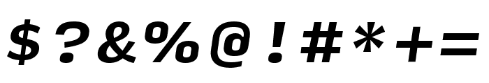 Input Serif Condensed Bold Italic Font OTHER CHARS