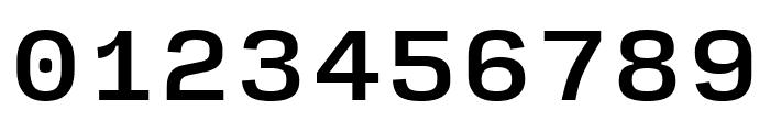 Input Serif Condensed Medium Font OTHER CHARS
